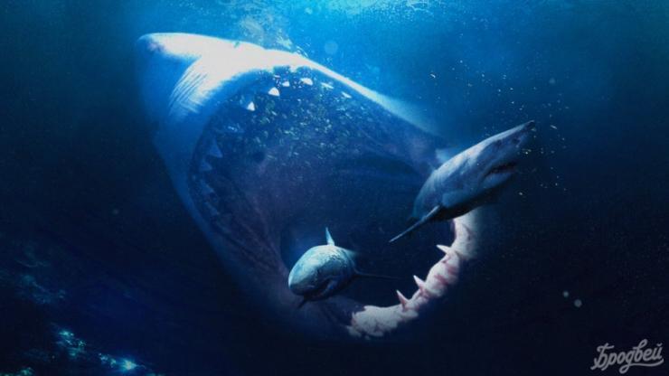 Стэйтем против доисторической акулы. Трейлер «Мег»